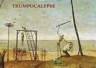Dub Vulture-webcrop