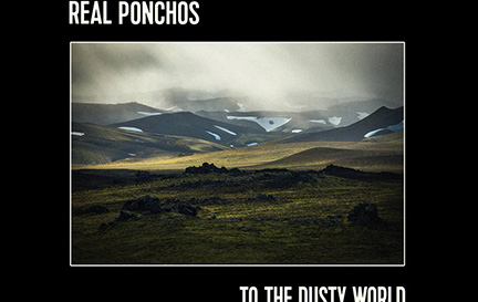 Real Ponchos-webcrop